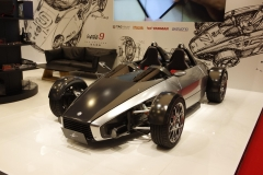 Tokyo Motor Show 2013 (24)
