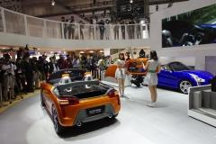 Tokyo Motor Show 2013 (34)