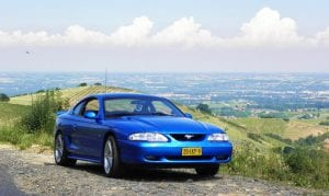 Mustang op vakantie